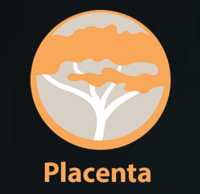 main image of placenta addon